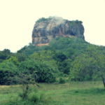 Des vacances sous le signe de la découverte de la nature Sri Lankaise